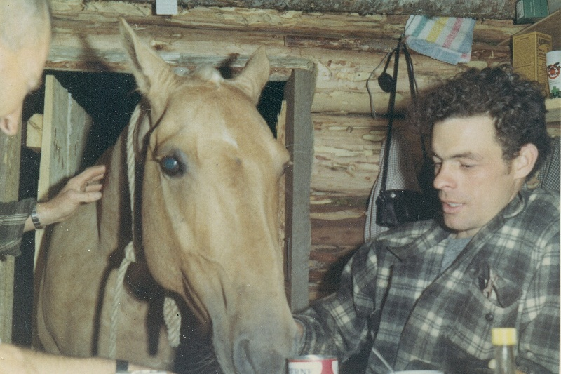 Horse with head in cabin - 1967