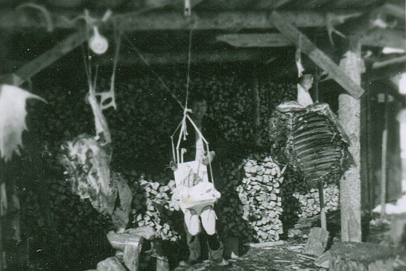 Brad Bowden hanging in swing in woodshed - 1955