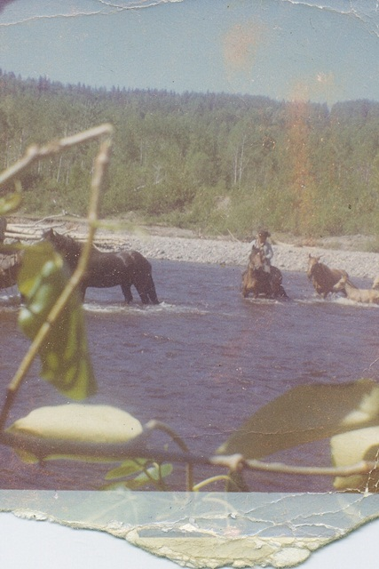 Horses crossing river - Brad in middle - 1960's